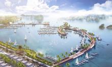 Mở bán dự án Green Dragon City, biệt thự mặt biển chỉ 29tr/m2