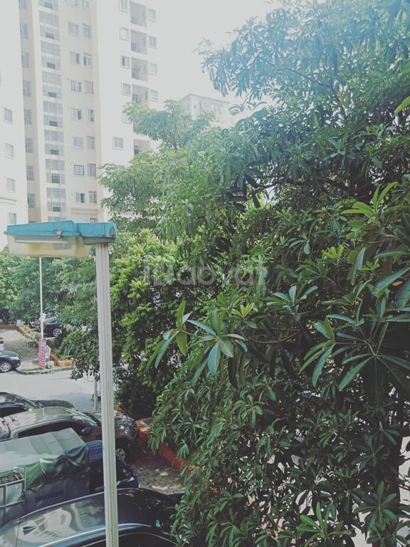 Bán căn góc chung cư B11B Nam Trung Yên, 116m2