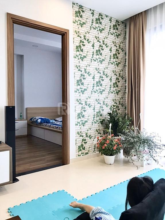 Bán căn hộ chung cư Pegasuite ở Quận 8, full nội thất, giá hấp dẫn