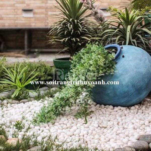 Sỏi trang trí tiểu cảnh sân vườn