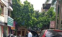 Bán nhà phân ô Nguyễn Thị Định, Cầu Giấy