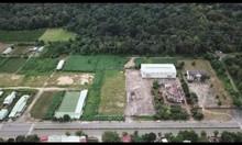 Chào bán 270 m2 thổ cư mặt tiền Hùng Vương nối dài - gần Mega City Kon
