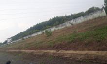 Bán đất mặt tiền đường nhựa xã Long Phước, huyện Long Thành
