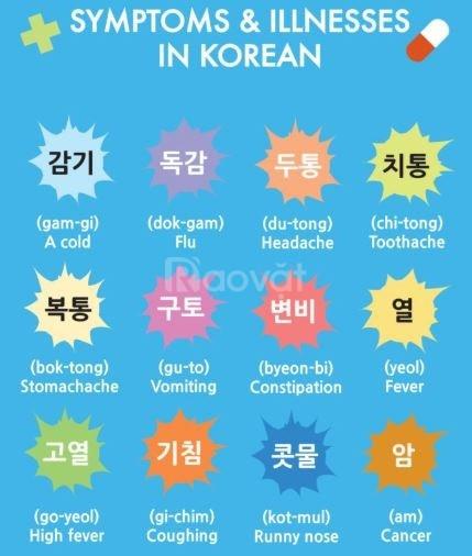 Học từ vựng tiếng Hàn chủ đề bệnh viện cùng Atlantic