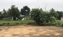 Cho thuê đất làm nhà kho hoặc nhà xưởng