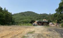 Cần bán gấp 2215m2 đất nhà vườn tại Việt Hưng, Hạ Long giá 1 triệu m2