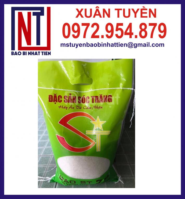 In bao bì gạo 5kg, túi PA đựng gạo