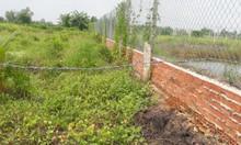Đất vườn huyện Bình Chánh,  1.000m2 có sổ riêng.