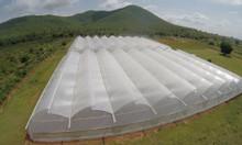 Có 1000m2 trồng rau sạch trong nhà màng, công nghệ nhà màng