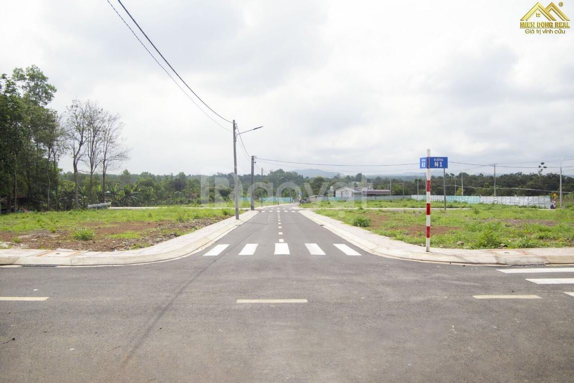 Cần bán lô đất gần sân bay Long Thành ngay mặt tiền 769, SHR (ảnh 6)
