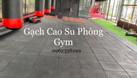 Thảm phòng tập Gym (ảnh 4)