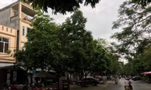 Cho thuê nhà tại số 294 Nguyễn Công Hòa, quận Lê Chân, Hải Phòng