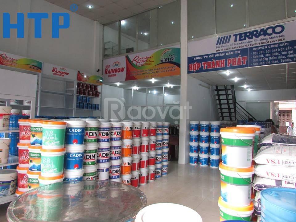 Nhà phân phối sơn nước nội ngoại thất Cadin giá rẻ cho người tiêu dùng