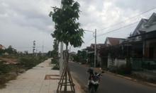 Đất nền dự án xã Tịnh Long, Quảng Ngãi