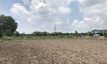 Chính chủ cần bán lô đất nông nghiệp, giá tốt tại Bến Lức, Long An