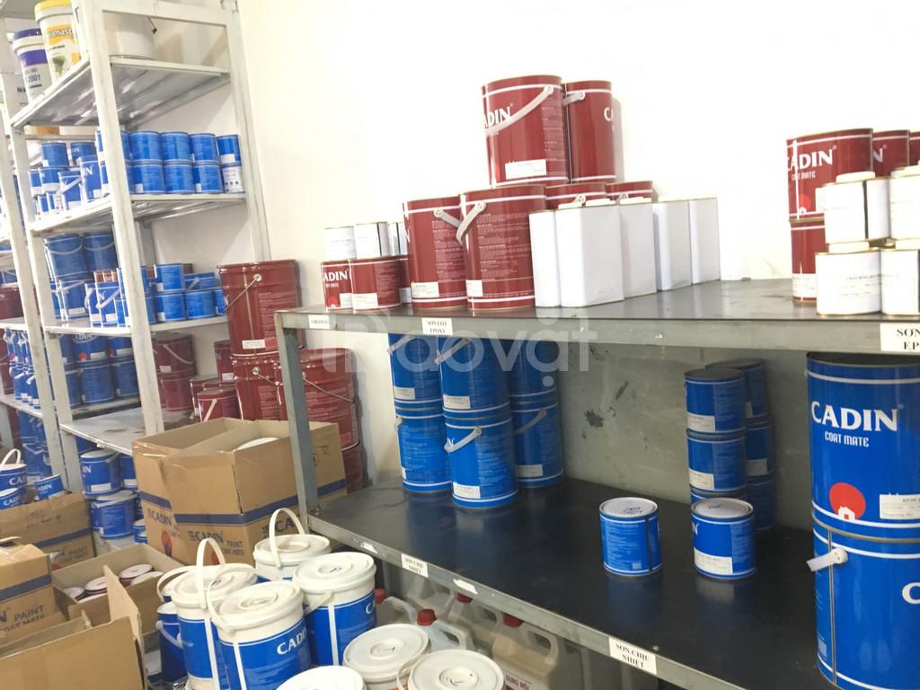 Cần tìm đại lí bán sơn dầu cadin tại Gia Lai