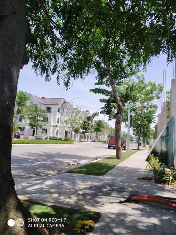 Times Garden Vĩnh Yên Residences