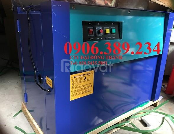 Máy đóng đai thùng bằng dây đai nhựa PP giá rẻ