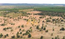 Đất vườn Nam Á Garden sổ hồng giá rẻ chỉ từ 50 nghìn/m2