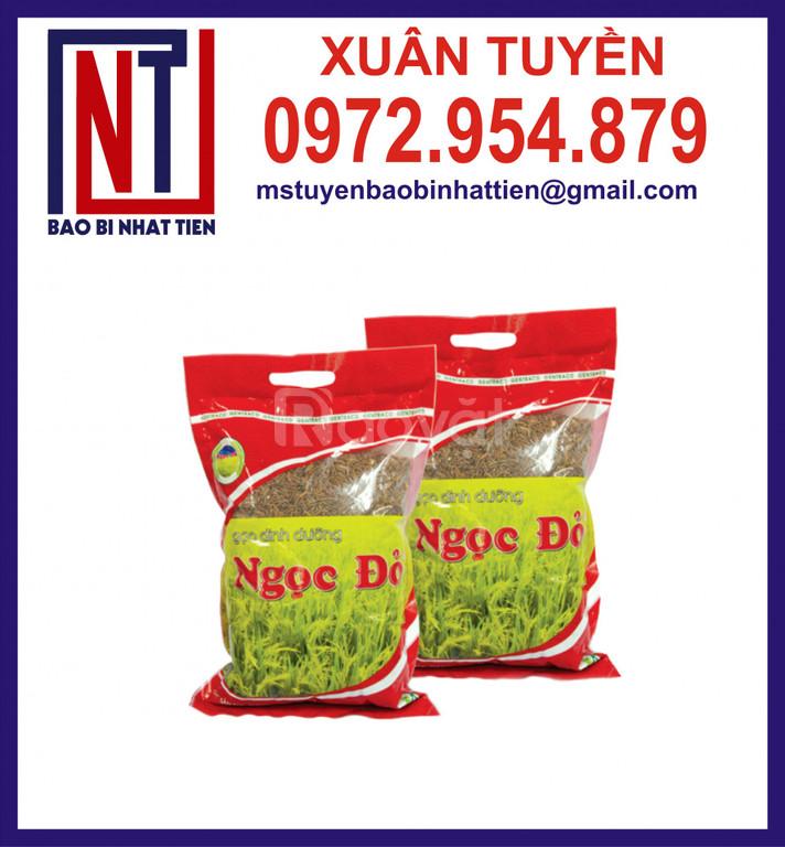 Túi đựng gạo 1kg, 2kg PA