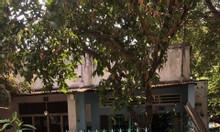 Bán đất 100m2 và căn nhà cấp 4 ở Nguyễn Thị Định, Cát Lái, Q2, 2.5 tỷ