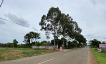 Bán gấp 2 lô đất liền kề ngay trung tâm Phú Mỹ 700 triệu/nền