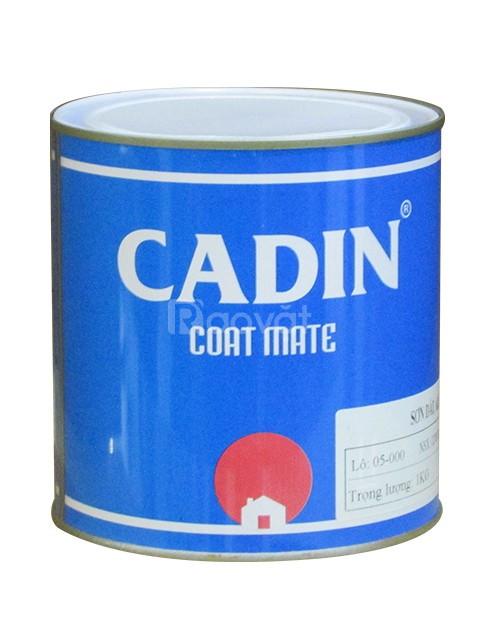 Muốn mua sơn dầu màu đỏ cho hệ thống PCCC tại quận Tân Bình, TPHCM