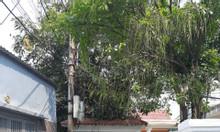 Cần ra căn nhà tâm huyết đẹp đường Nguyễn Lương Bằng, ĐN, gần chợ