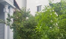 Bán nhà Lê Quang Định diện tích 892m2