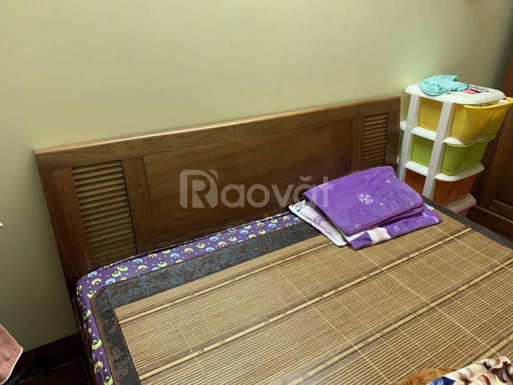 Giường gỗ xoan đào 1,6 x 2m Kèm đệm Everon 10cm