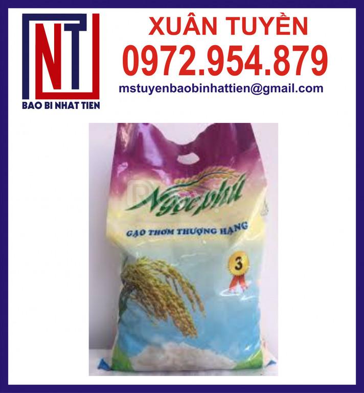 Túi đựng gạo 5kg cao cấp giá thành rẻ (ảnh 8)