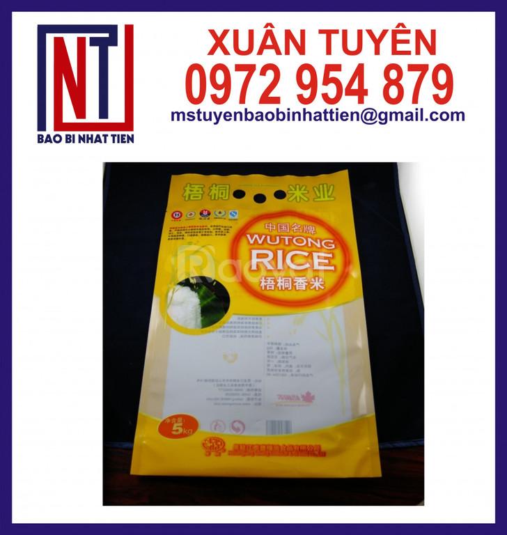 Cung cấp túi gạo 5kg
