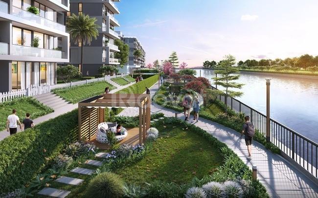 Đất dự án ven sông Cổ Cò, tiềm năng lớn cho khách đầu tư (ảnh 4)