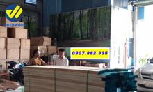 Bán gỗ sồi nga Bình Phước