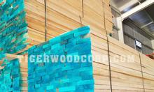 Bán gỗ ash Bình Phước