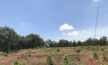 70m*70m đất mặt tiền đường KCN Phước Bình, Long Thành giá 15 tỷ.