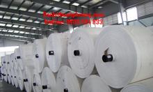 Manh PP dệt, sản xuất vải dệt PP dạng cuộn