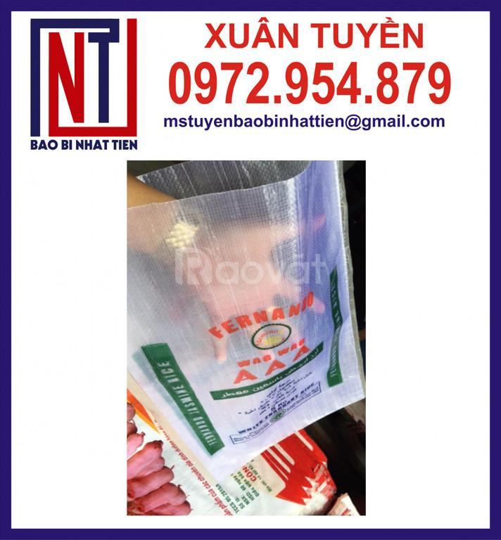 Bao bì màng ghép đựng gạo 5kg (ảnh 4)
