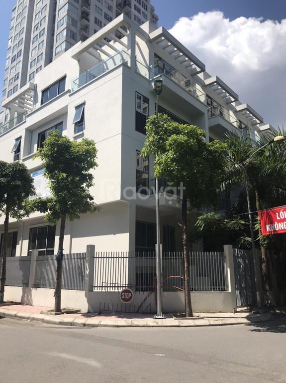 Biệt thự liền kề Thanh Xuân mở bán 18 lô giá từ 11 tỷ/lô