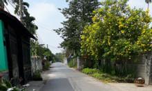 Đất nền mặt tiền đường nhựa, Bình Nhâm, Thuận An, Bình Dương. 970m2