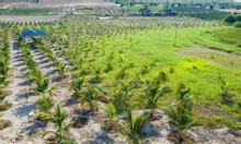 Đất nông nghiệp Hồng Thái làm HomeStay cách biển chỉ 15 phút đi xe.
