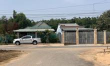 Đất Gò Dầu, phía sau bệnh viện Xuyên Á