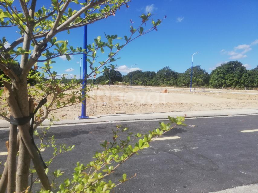 Chỉ 999tr, sở hữu ngay đất biệt thự trung tâm nghỉ dưỡng Bãi Dài (ảnh 5)