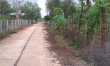 Chính chủ cần bán đất vườn, vị trí đẹp, giá rẻ tại Tp Buôn Ma Thuột
