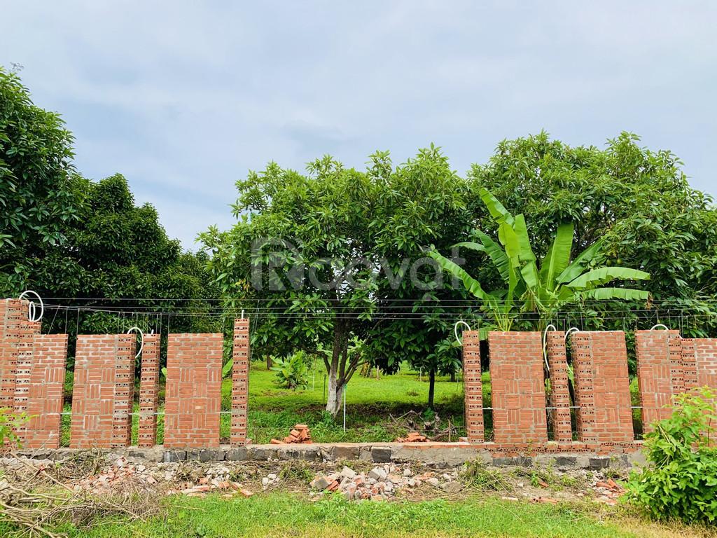Bán đất thổ cư tại Bà Rịa Vũng Tàu