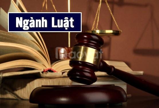 Học liên thông, văn bằng 2 Đại học Luật năm 2020