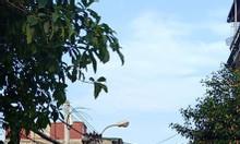Bán đất tặng nhà mặt phố Thanh Đàm, Hoàng Mai 100m2