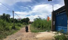 160m2 đất thổ cư đường Bờ Tây kinh Cây Khô xã Phước Lộc
