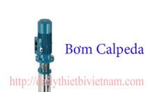 Bơm Calpeda