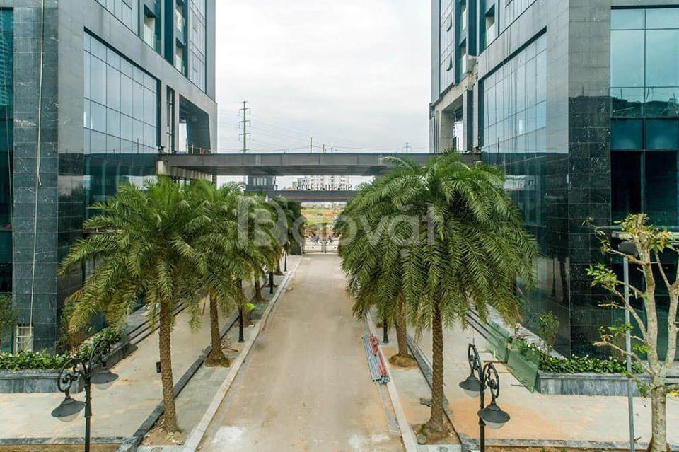 Bán căn duplex thông tầng 35-36 Sunshine City 6,8 tỷ (ảnh 6)